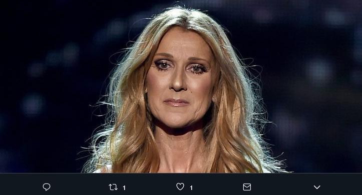 online retailer 3f855 62f95 Céline Dion e la sua linea di moda per bambini: «Ha a che ...