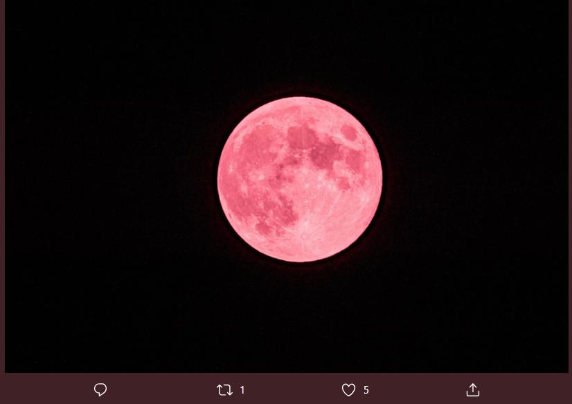 Calendario Lunare Segni Zodiacali.La Luna Fragola Influenza Anche I Segni Zodiacali Ecco Come