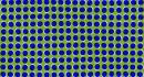 Le 10 illusioni ottiche più belle di sempre!