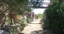 A Favignana un incredibile giardino sfida la natura: è il Giardino dell'Impossibile