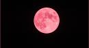 Spettacolo nel cielo: arriva la Luna Fragola!