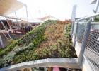 ANTONIO BERTOLOTTO Fondatore del MarcoPolo Enviromental Group, il concetto del tetto vegetale