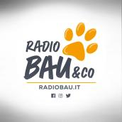 Radio Bau & Co