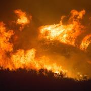 Gli incendi non si arrestano e chi si batte per la foresta muore.