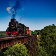 Treno e viaggiatori molesti