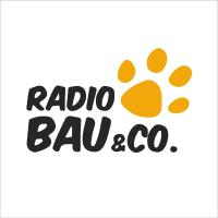 Radio Bau & Co
