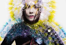 Sorprendente Björk: con la sua musica arriva il kit per chiamare gli uccelli