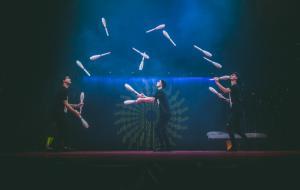 Stanno arrivando i migliori artisti del Cirque du Soleil e del mondo