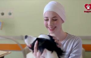 Amo gli animali: guarda il commovente video