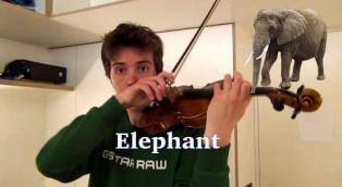 Quello che riesce a riprodurre questo ragazzo con il suo violino ha dell'incredibile!