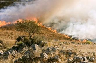Sardegna: da sabato roghi nelle zone delle vacanze.