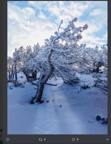 Sapete qual è il posto più freddo del mondo? In Siberia, dove si è arrivati a -71,2° C