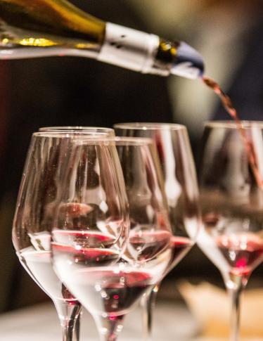 Merano WineFestival 2019: gli appuntamenti clou
