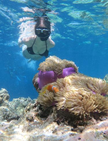 L'hotel sommerso nella Grande Barriera Corallina