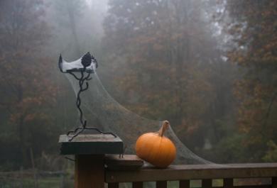 Sai decorare la zucca di Halloween? Ecco alcune dritte!