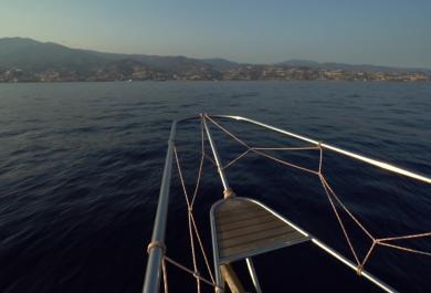 Pelagos: il Santuario internazionale per i cetacei