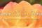Concorso Internazionale di Bouquet