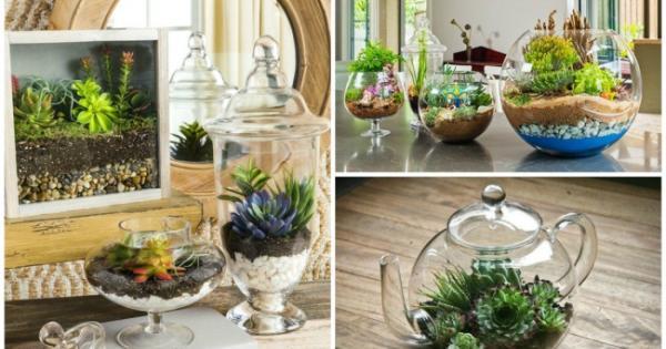 I meravigliosi giardini in miniatura che puoi fare con le for Giardini meravigliosi