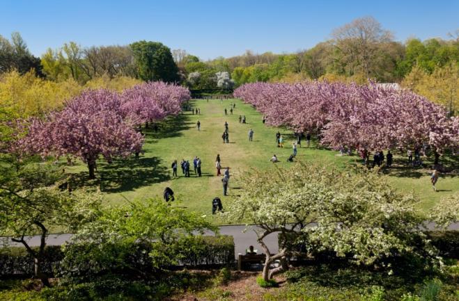I giardini pi belli del mondo foto radio monte carlo for Giardino trofeo