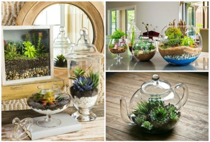 I meravigliosi giardini in miniatura che puoi fare con le - Piccoli giardini di casa ...