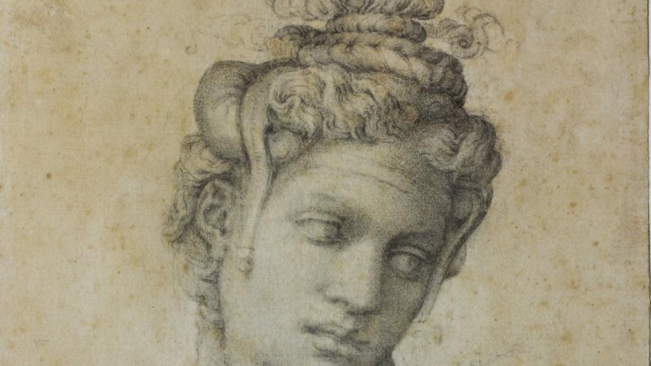 Michelangelo divino artista